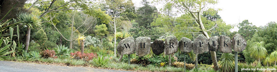 What to do in Kerikeri